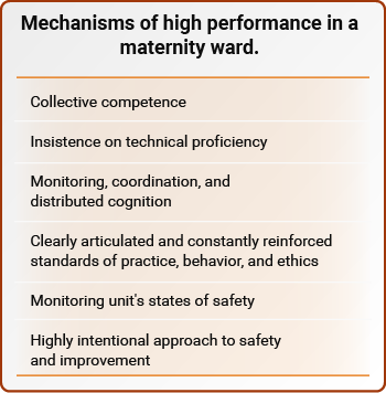 Mechanisms of high performance in a maternity ward.